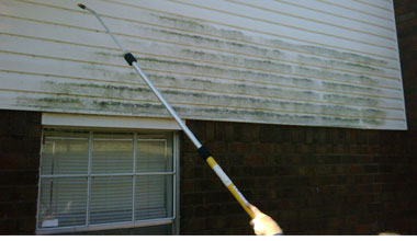 Eliminate Mold and Mildew
